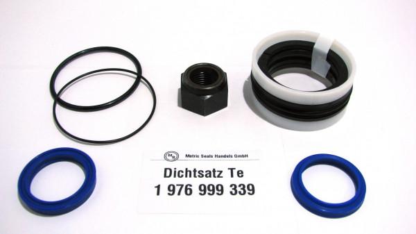 Dichtsatz passend für TEREX 1976999339