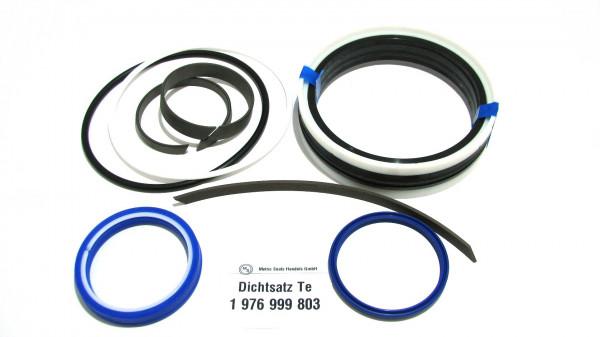 Dichtsatz passend für TEREX 1976999803