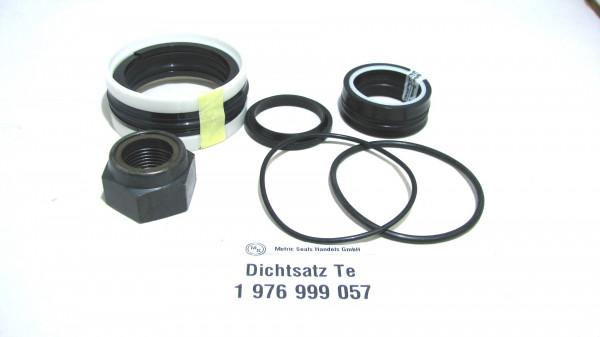 Dichtsatz passend für TEREX 1976999057