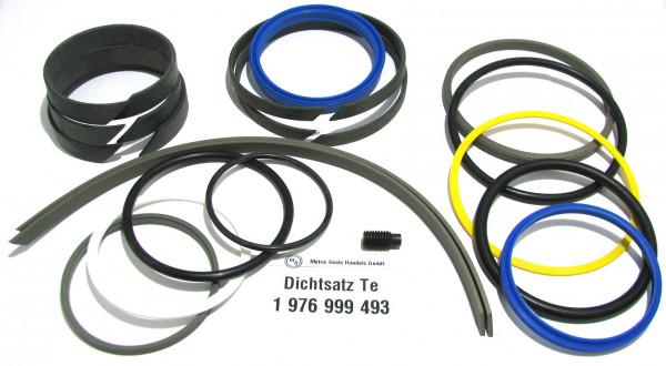 Dichtsatz passend für TEREX 1976999493