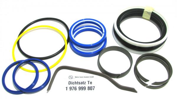 Dichtsatz passend für TEREX 1976999807