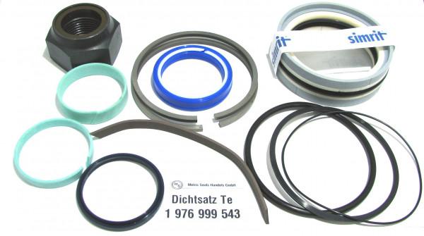 Dichtsatz passend für TEREX 1976999543