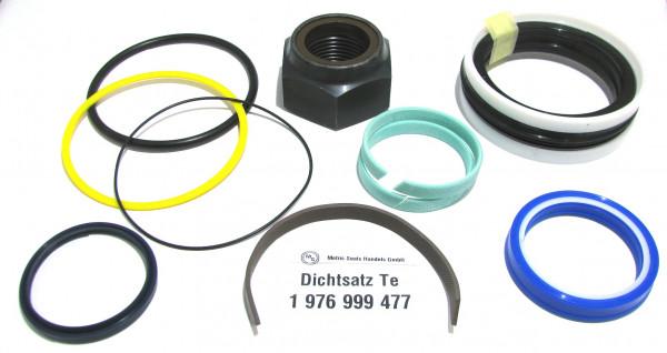 Dichtsatz passend für TEREX 1976999477