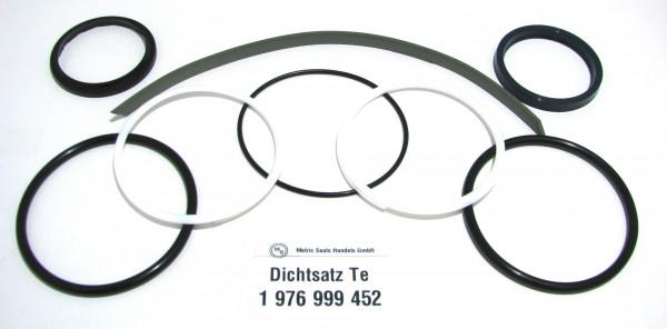 Dichtsatz passend für TEREX 1976999452
