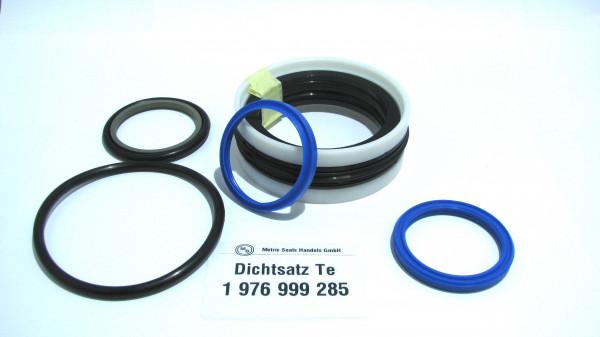 Dichtsatz passend für TEREX 1976999285