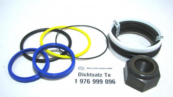 Dichtsatz passend für TEREX 1976999096