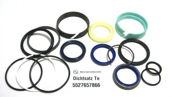Dichtsatz passend für TEREX 5527657866