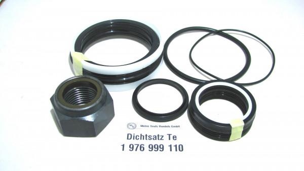 Dichtsatz passend für TEREX 1976999110