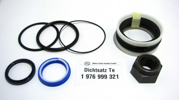Dichtsatz passend für TEREX 1976999321