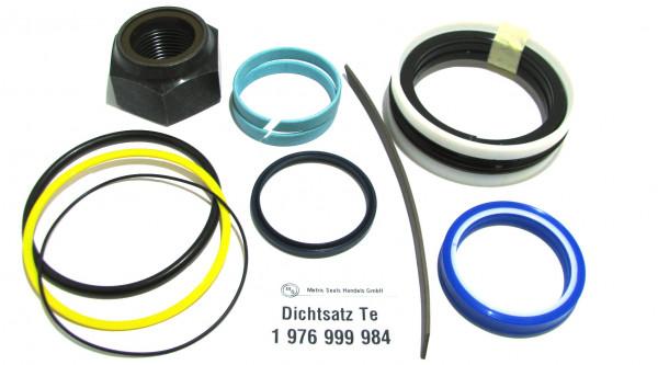 Dichtsatz passend für TEREX 1976999984