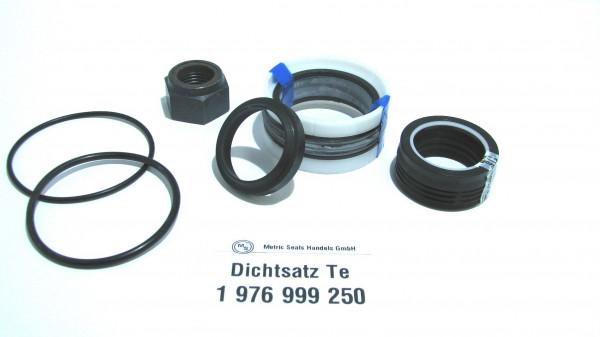 Dichtsatz passend für TEREX 1976999250