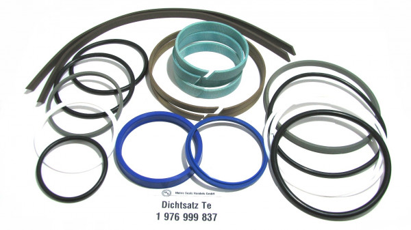 Dichtsatz passend für TEREX 1976999837