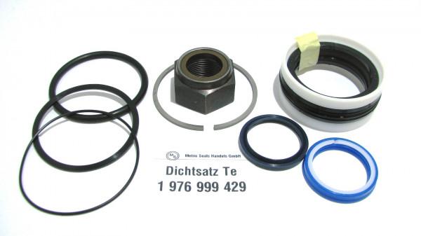Dichtsatz passend für TEREX 1976999429
