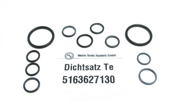 Dichtsatz passend für TEREX 5163627130