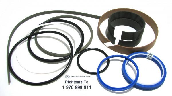 Dichtsatz passend für TEREX 1976999911