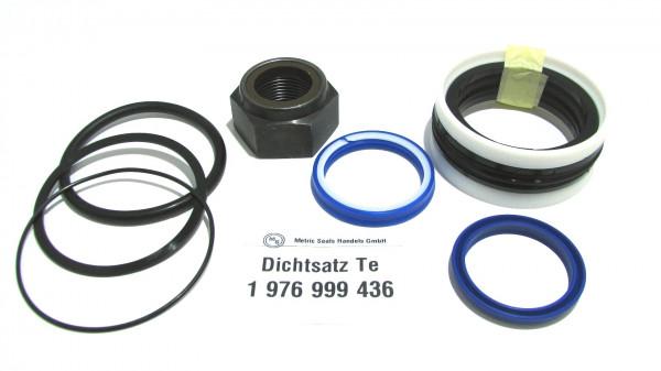 Dichtsatz passend für TEREX 1976999436