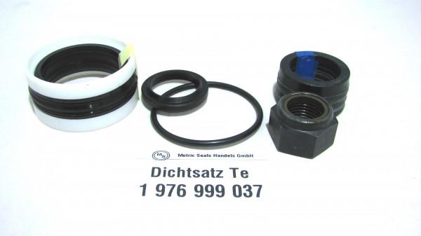 Dichtsatz passend für TEREX 1976999037