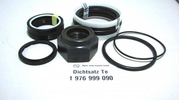 Dichtsatz passend für TEREX 1976999090