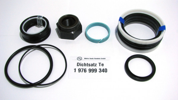 Dichtsatz passend für TEREX 1976999340