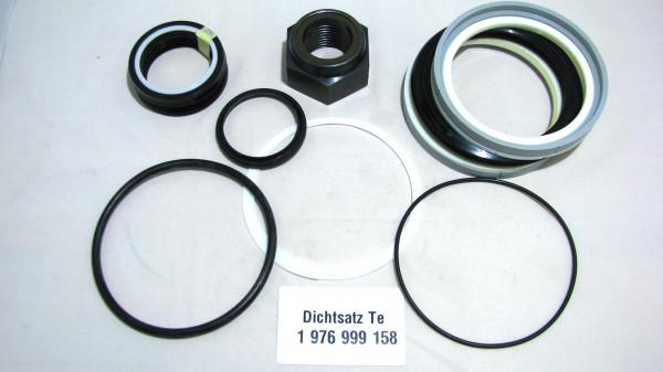 Dichtsatz passend für TEREX 1976999158