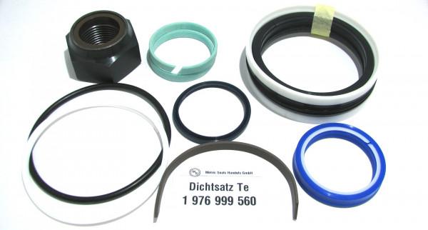Dichtsatz passend für TEREX 1976999560