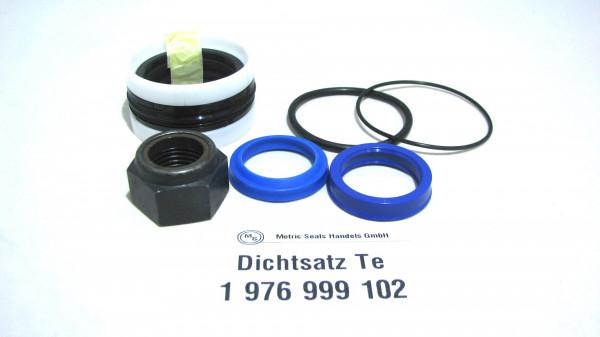 Dichtsatz passend für TEREX 1976999102
