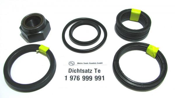 Dichtsatz passend für TEREX 1976999991