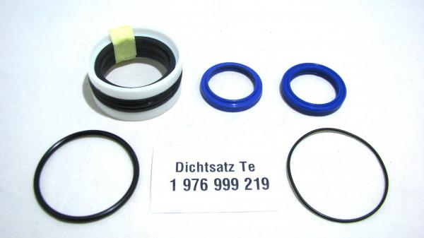 Dichtsatz passend für TEREX 1976999219