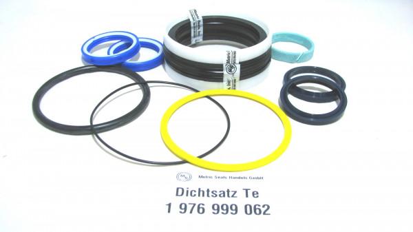 Dichtsatz passend für TEREX 1976999062