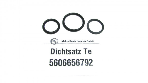 Dichtsatz passend für TEREX 5606656792