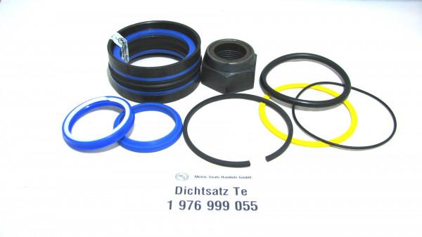 Dichtsatz passend für TEREX 1976999055