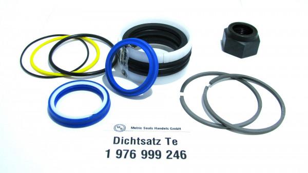 Dichtsatz passend für TEREX 1976999246