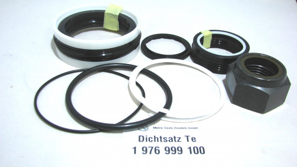 Dichtsatz passend für TEREX 1976999100