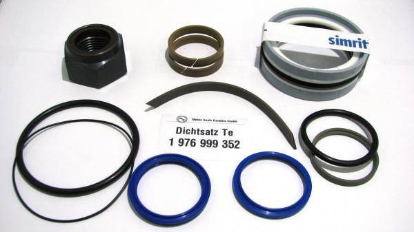 Dichtsatz passend für TEREX 1976999352